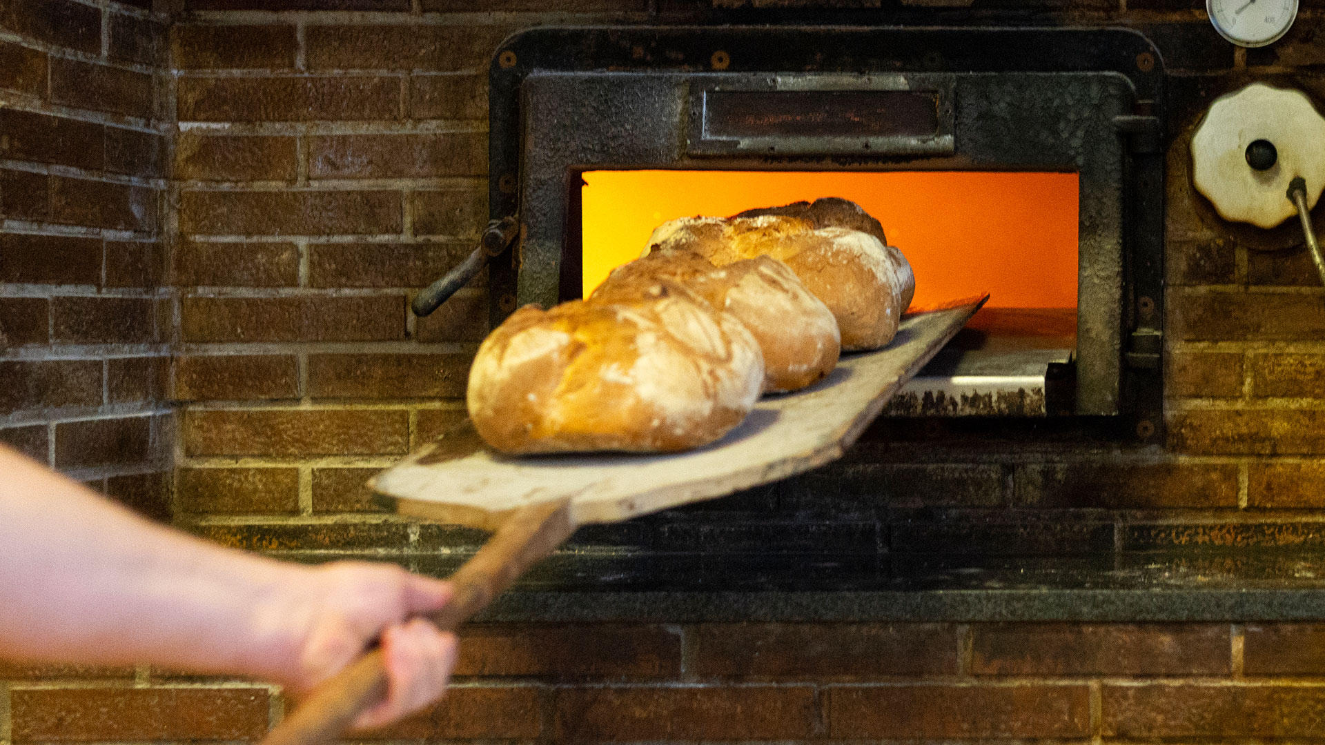 horno tradicional gracia berduque